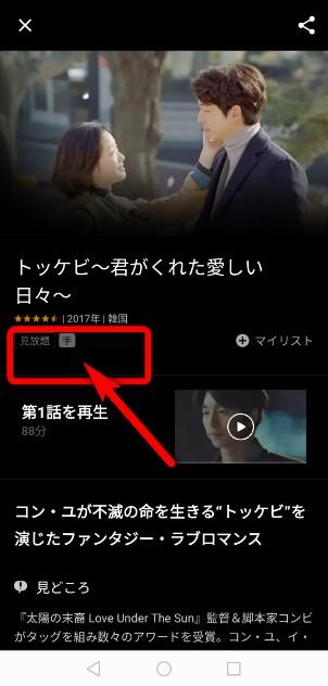 韓国ドラマ日本語吹き替えで見る方法